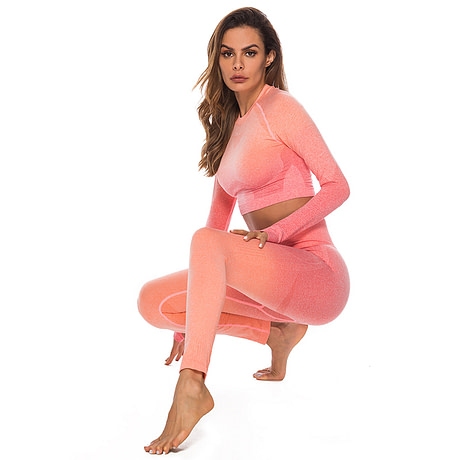 Seamless High Waist Quick-Drying Breathable Stretch Sets Fitness Push Up Female 2 Piece Set  Gradient Color Elastic Clothes Sets 5